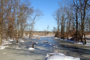Great Brook, Great Swamp NWR, NJ, Jan. 3, 2014 (photo by Jonathan Klizas).