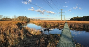 Troy Meadows at Troy Brook, Oct. 26, 2014 (iPhone 6 Plus pano by J. Klizas)