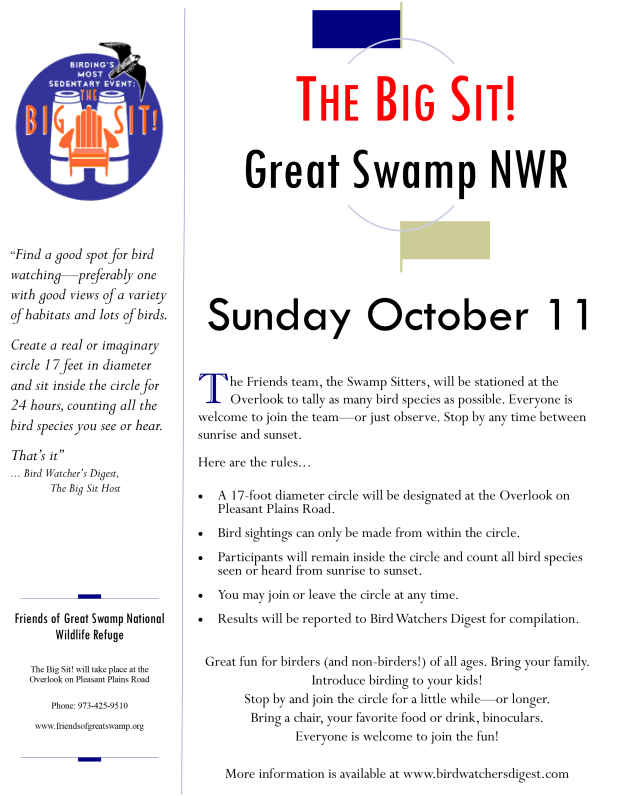 Big Sit flyer-2015